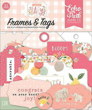 wbg233025 welcome baby girl frames tags front