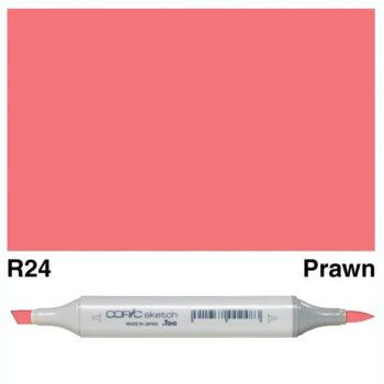 0018922 copic sketch r24 prawn 63493.1584501500.1280.1280 1200x1200 1